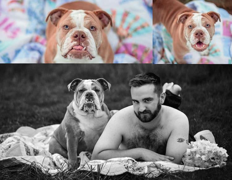 Calendario 2020 de perros rescatados