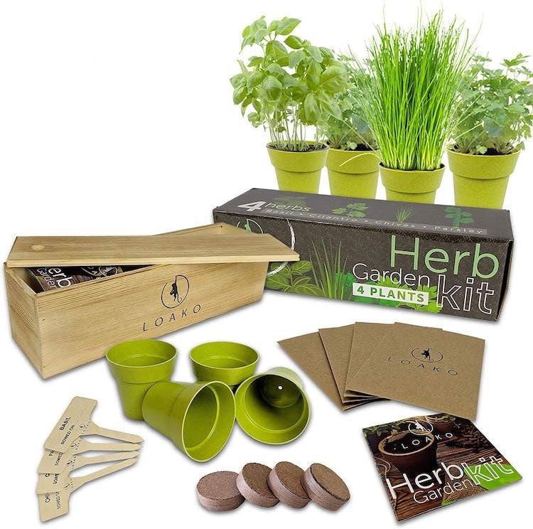 Home Herb Garden Kit