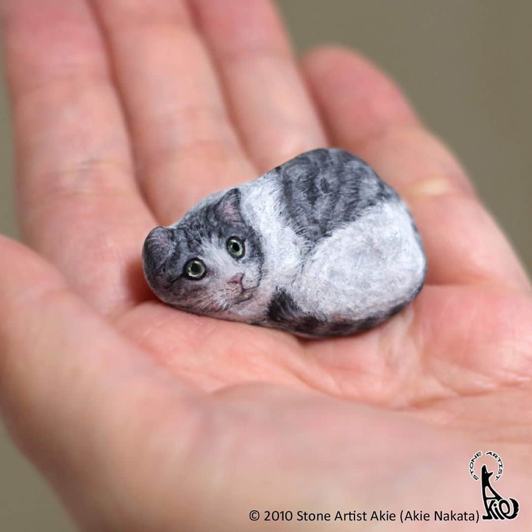 Rock Painted to Look Like a Cat