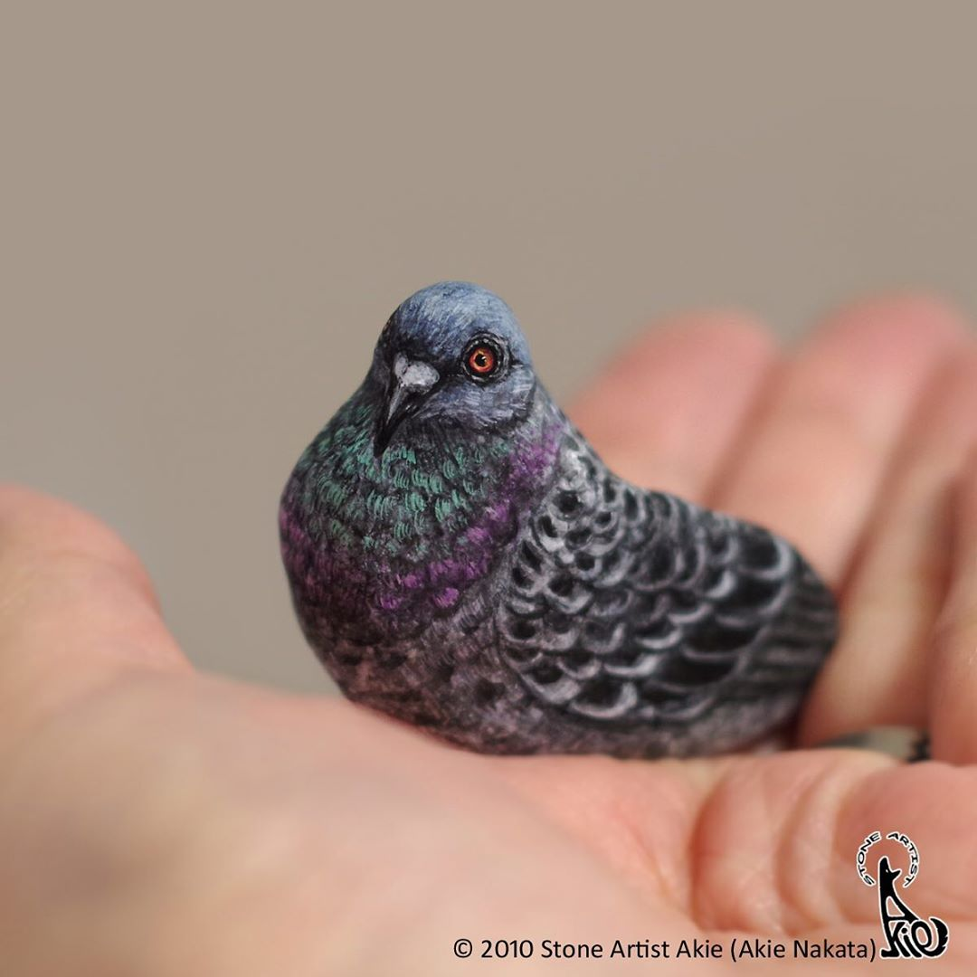 Bird Painted Rock Animal