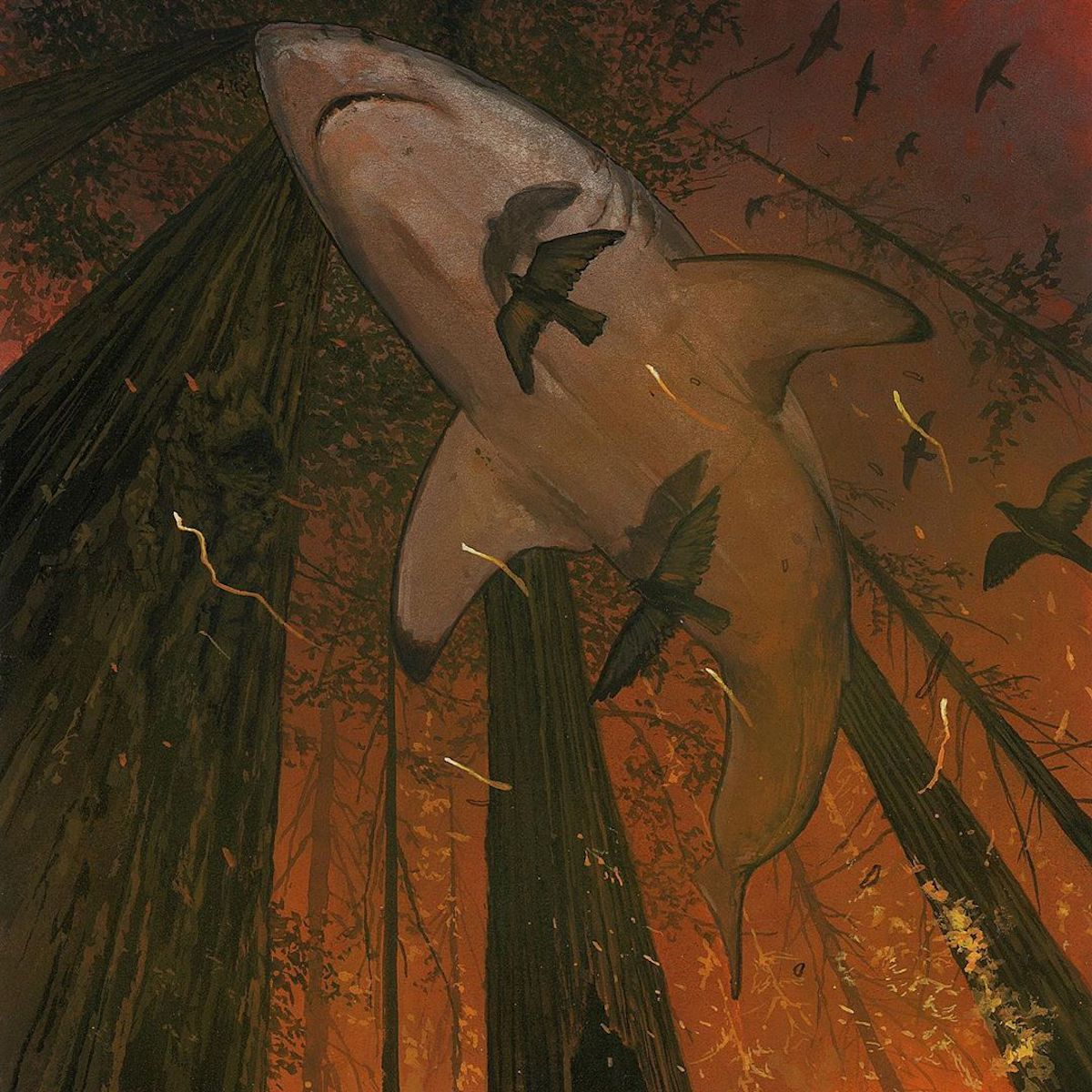 Chris Austin Shark Paintings