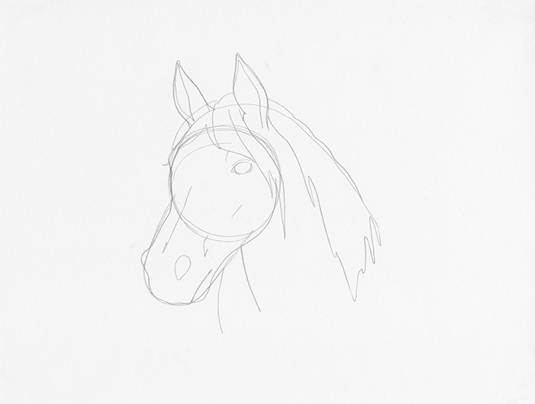 How to Draw a Horse Head in 3/4 View