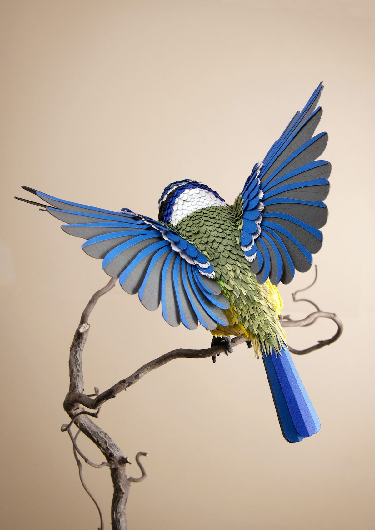 Bird Sculpture Made of Paper by Lisa Lloyd