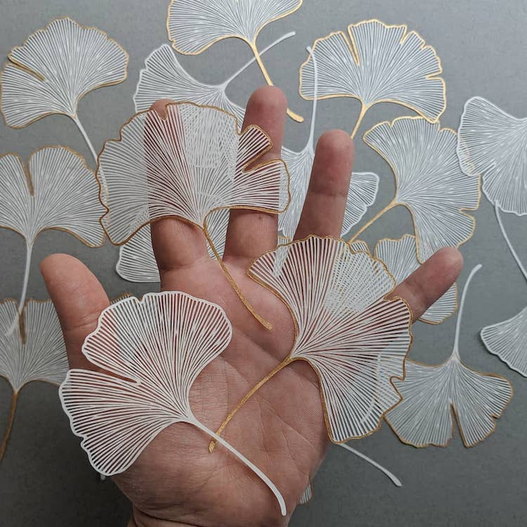 Paper Cut Outs by Pippa Dyrlaga