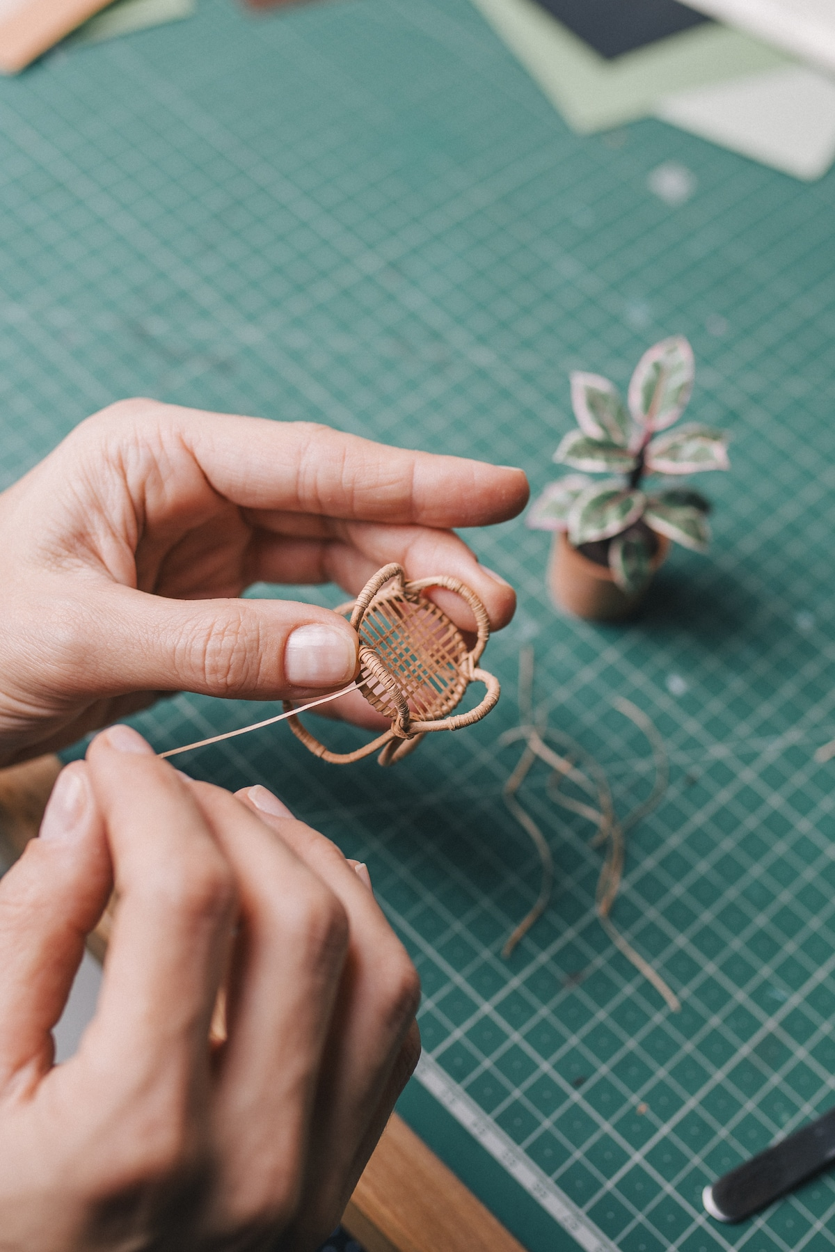 Esculturas de papel de plantas