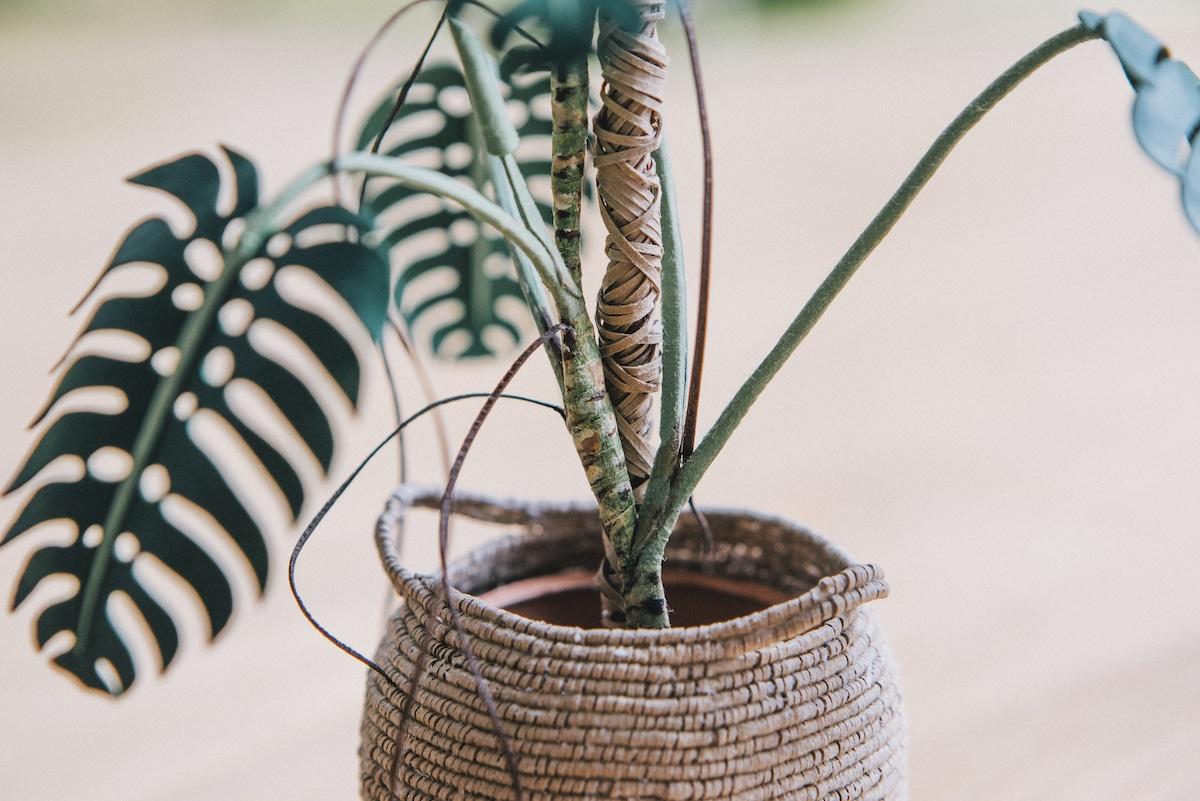 Plantas de papel hechas a mano