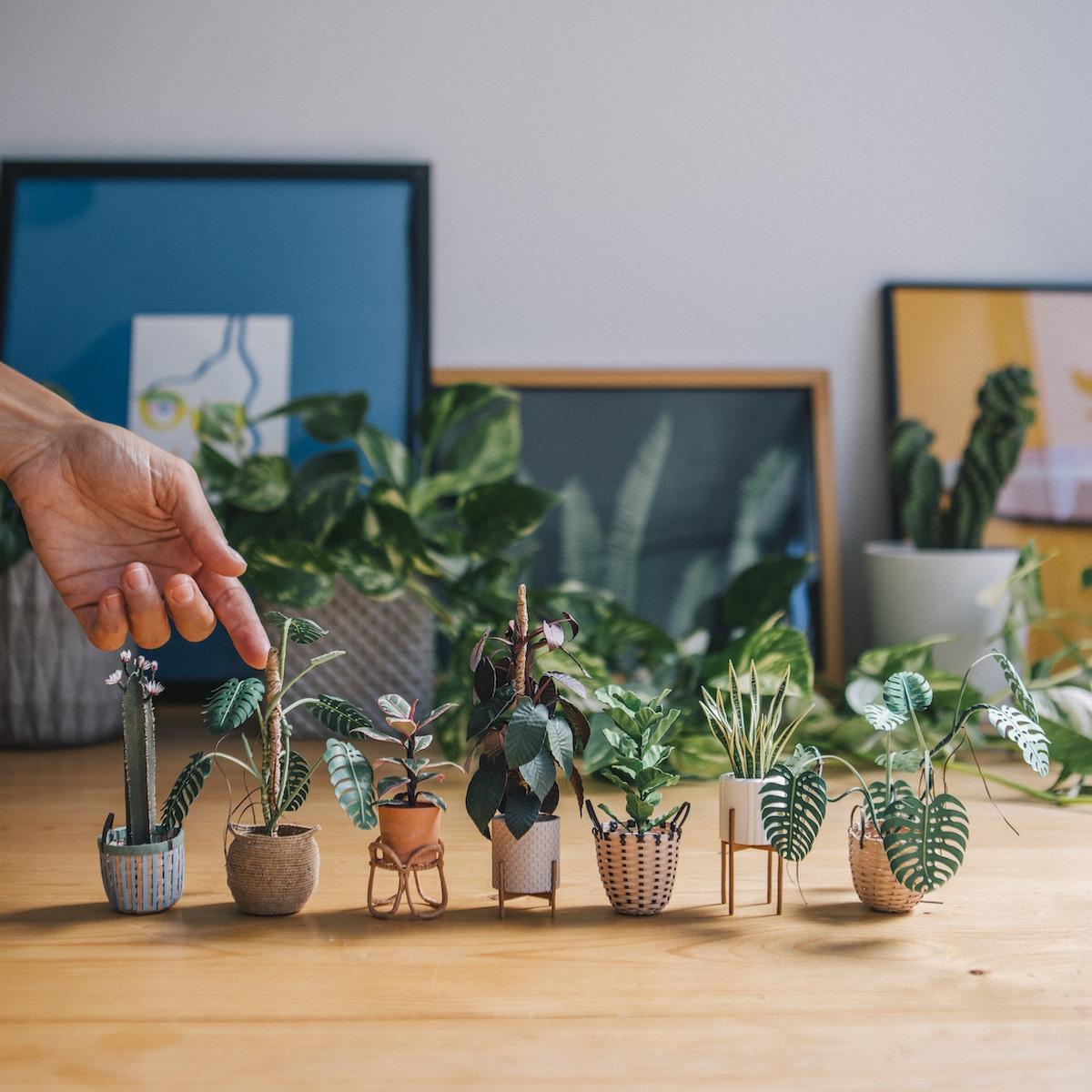 Handmade Paper Plants