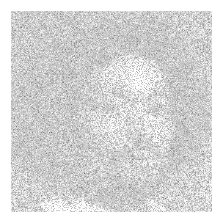 Robert Bosch arte y matematicas