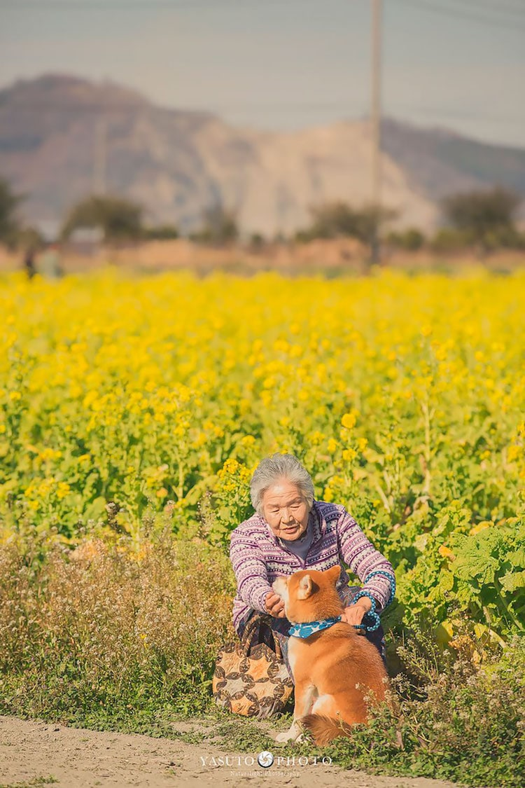 Grandmother Portraits in Japan by YASUTO