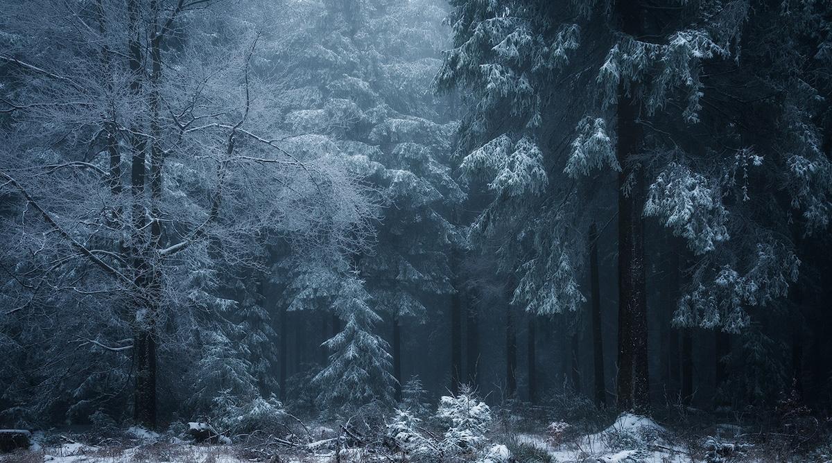 paraiso invernal