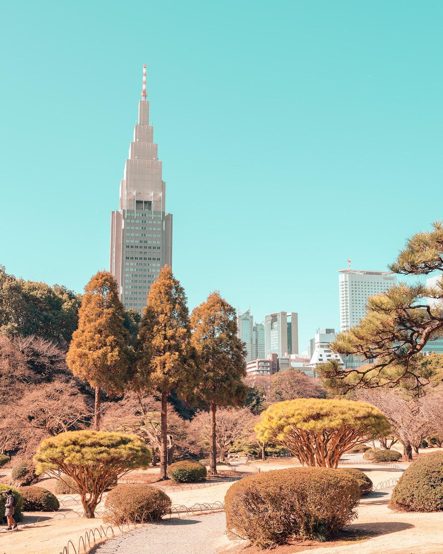 Tokyo Travel Photography