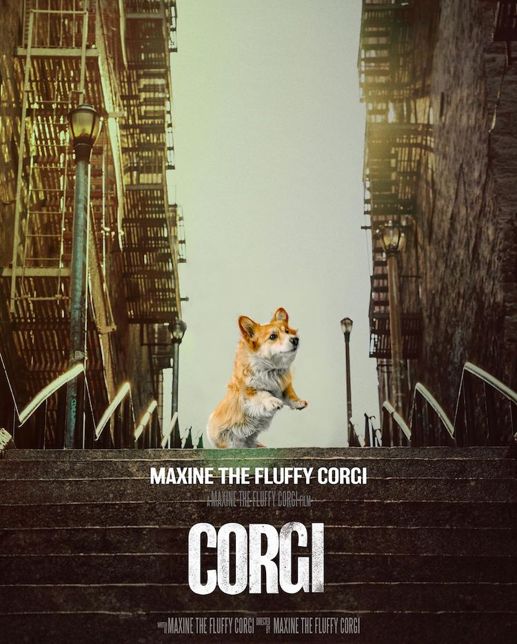 Maxine the Corgi in Reimagined Film Posters