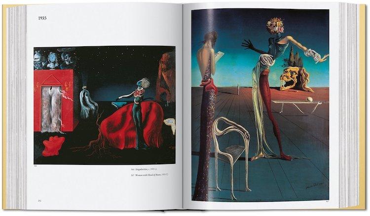 libro de pinturas dali