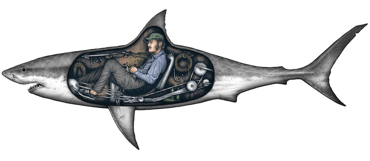 Shark Illustration by Paul Jackson