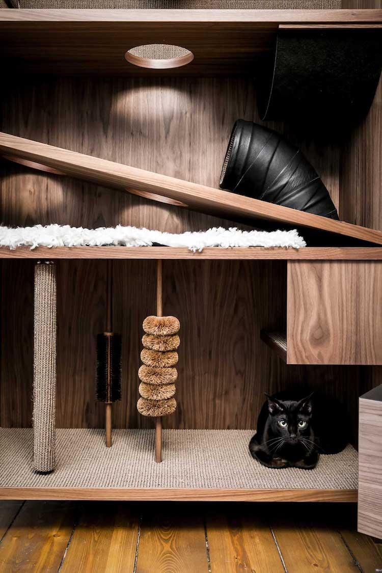 Stylish Cat Furniture is Packed With 10 Things to Make Them Happy
