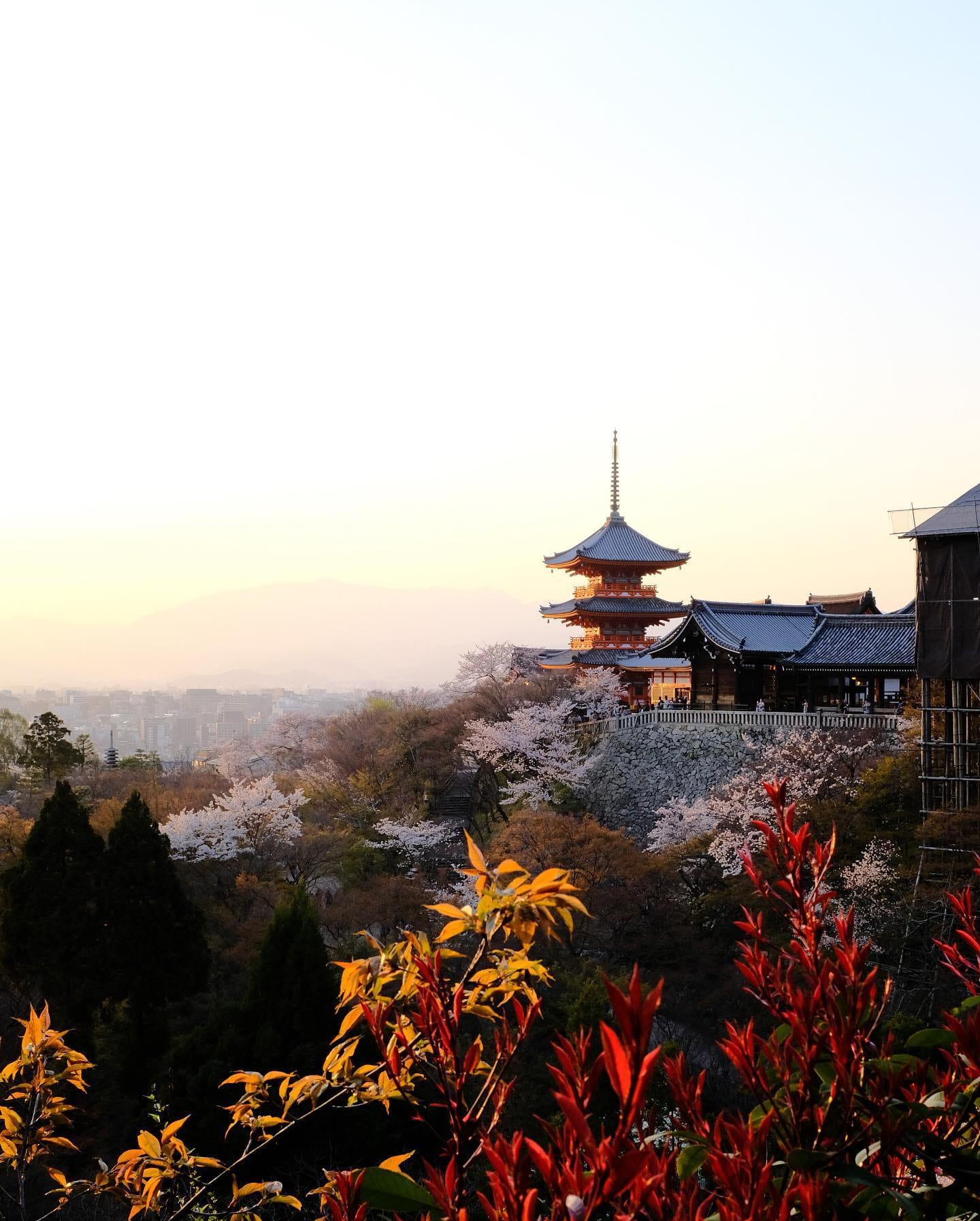 templo japones otoño