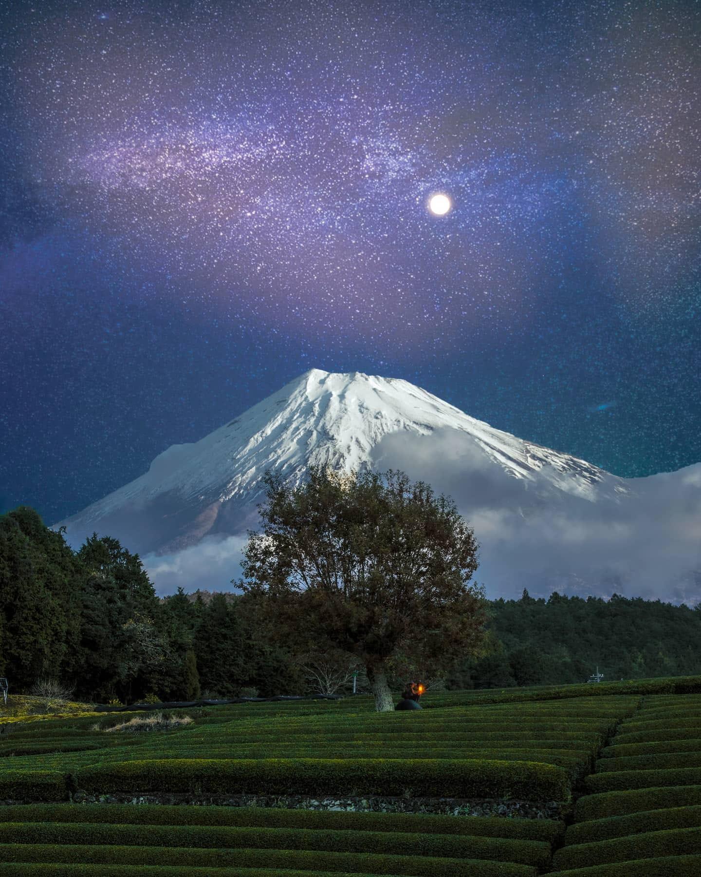 Obuchi Sasaba Tea Plantation at Night