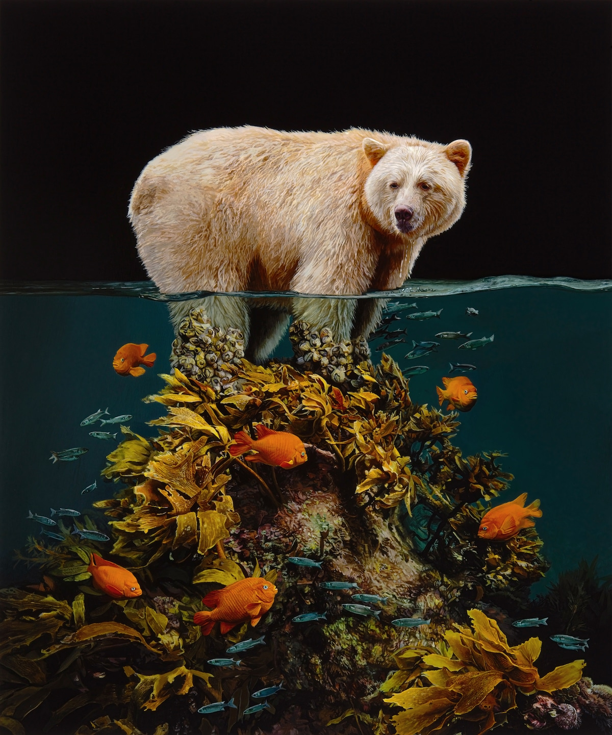 """Islands"" Animal Paintings by Lisa Ericson"