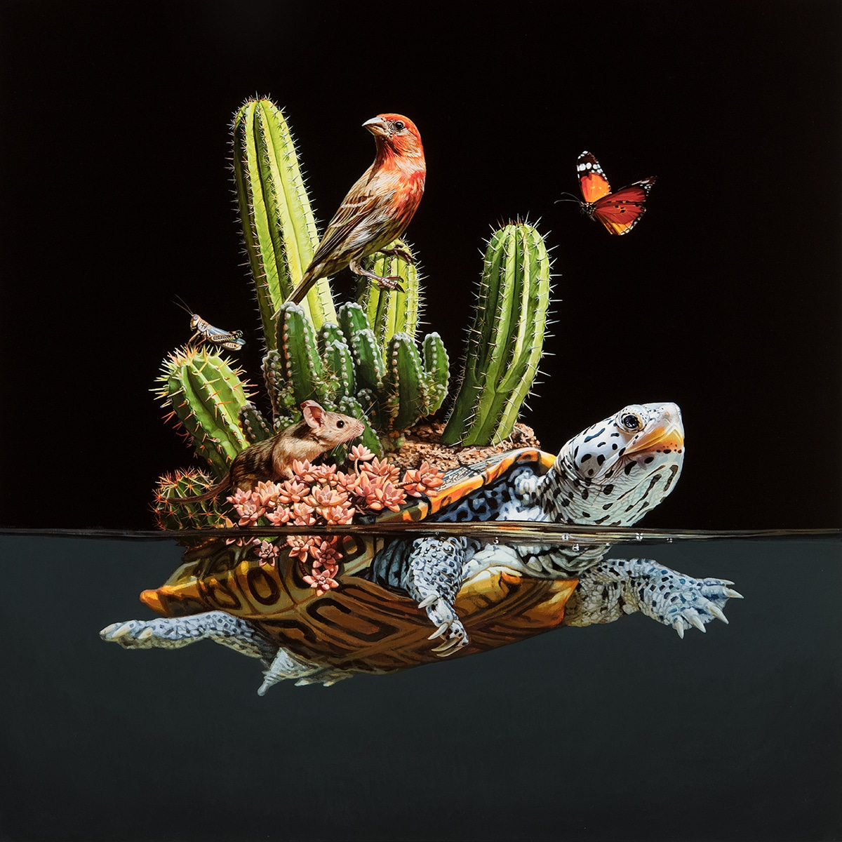 Animal Paintings by Lisa Ericson