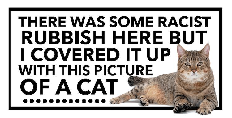 Cat Sticker Graffiti Cover Up