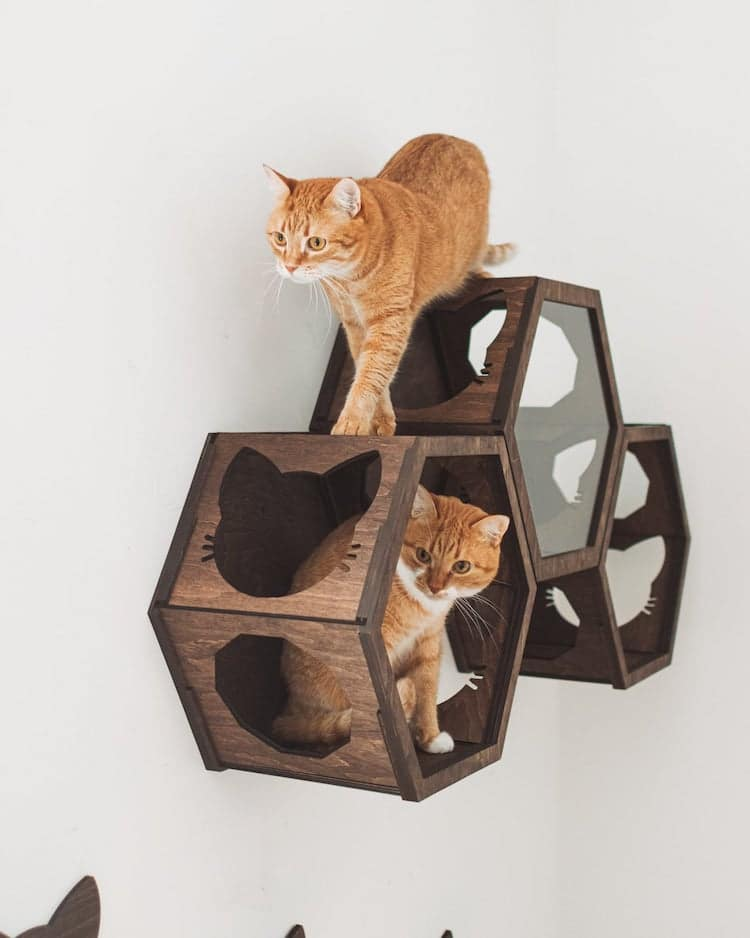 Contemporary Cat Furniture
