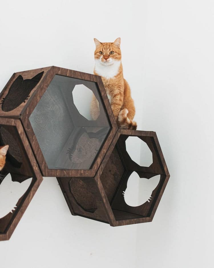 Wall Cat Furniture