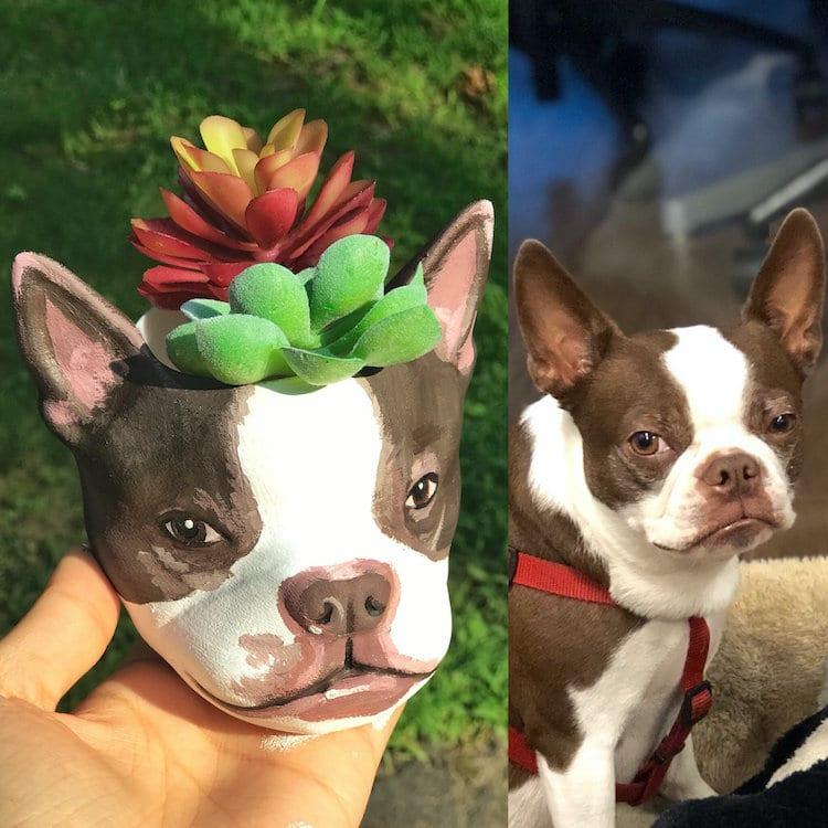 Custom Pet Planter