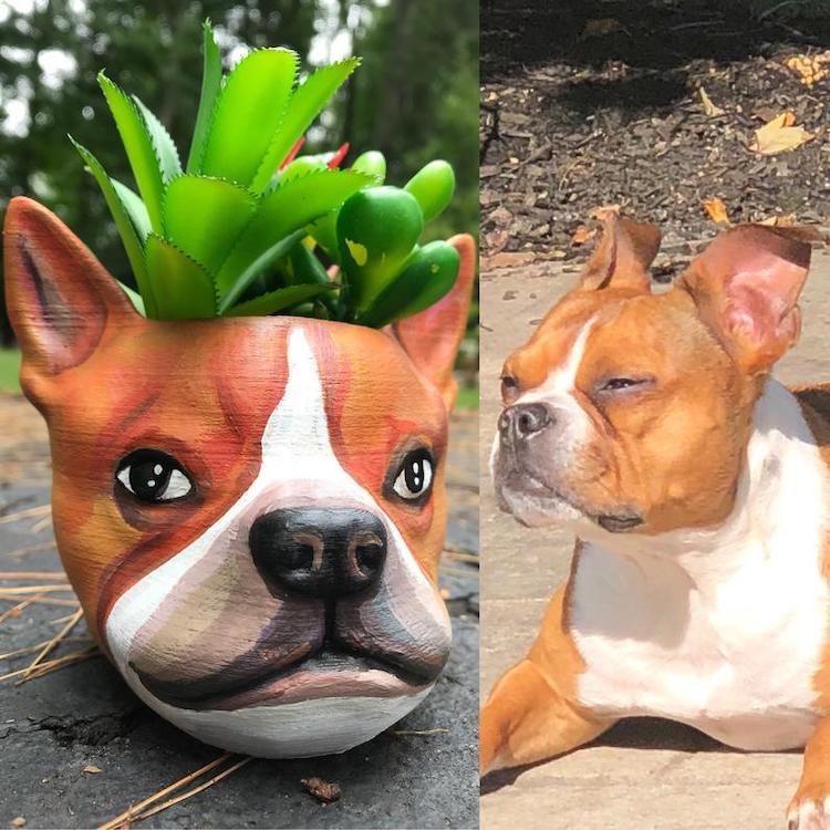 maceta de perro