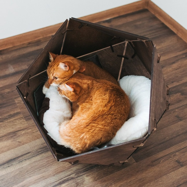 Modern Cat Furniture by Oh My Woood