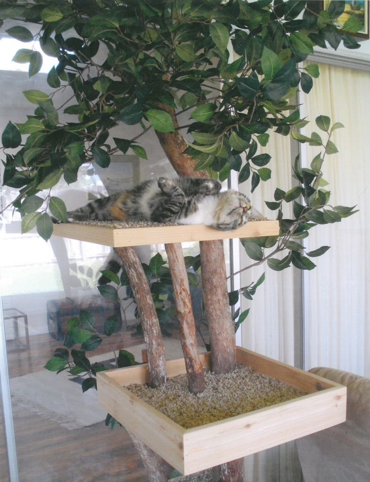 torre para gato