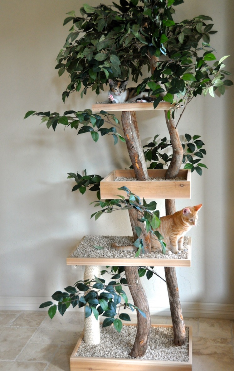 Real Cat Trees Provide A Lifelike Outdoor Experience For Feline Friends