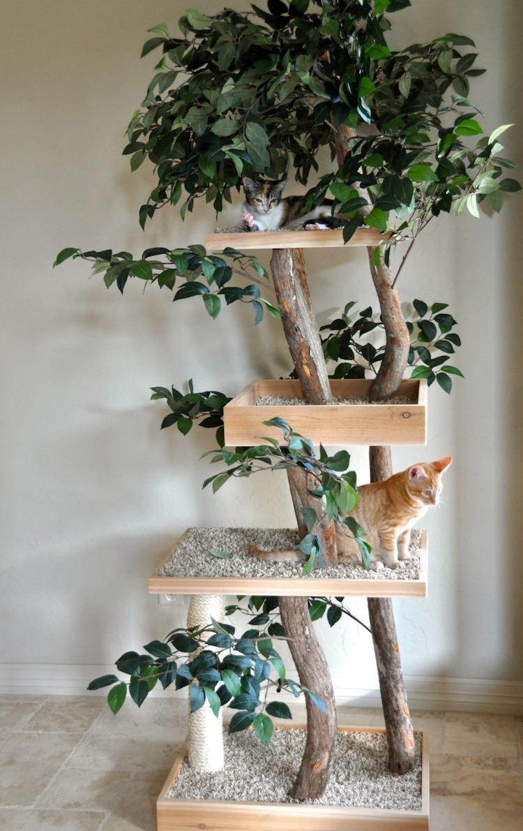 arboles para gato