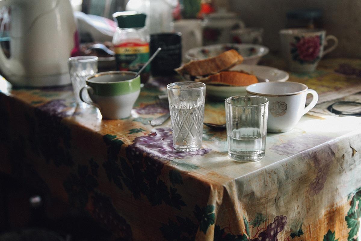 vida en la zona de exclusion de chernobyl