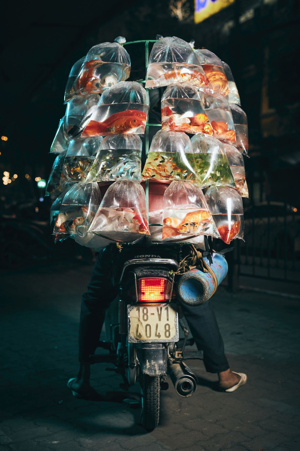 Man Transporting Fish on a Scooter in Vietnam