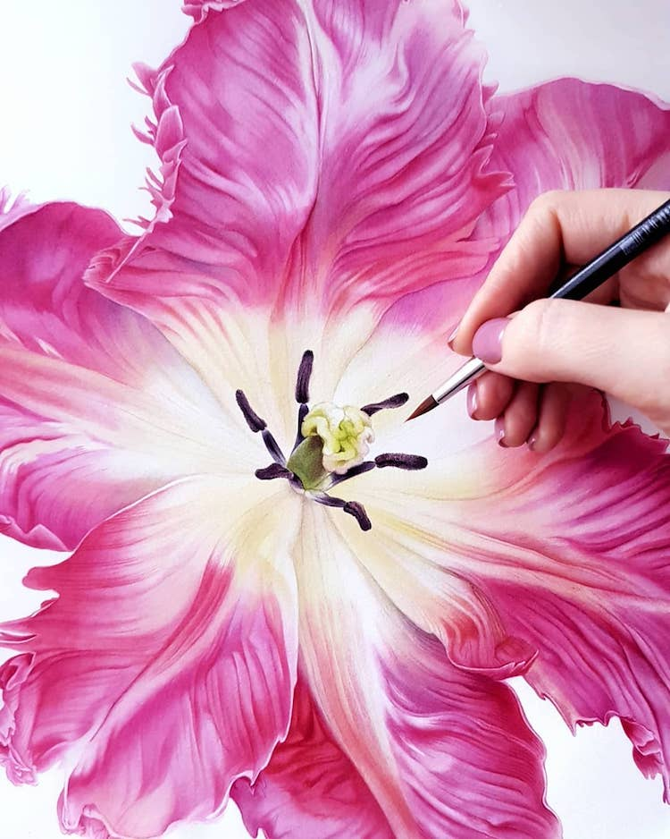 Botanical Watercolor Paintings by Svetlana Lanse