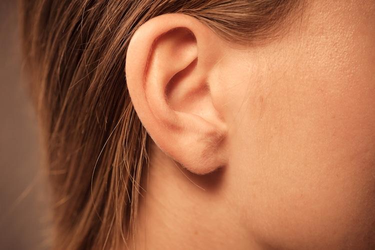 Photo d'une oreille