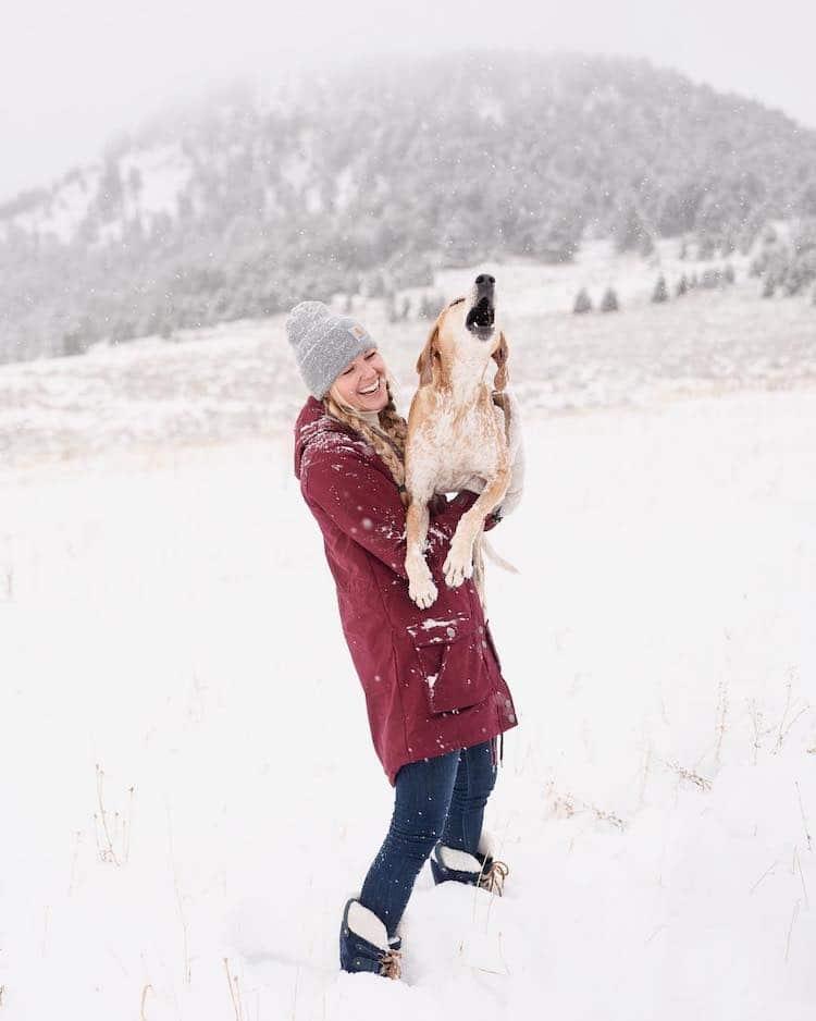 Dog Family Photo