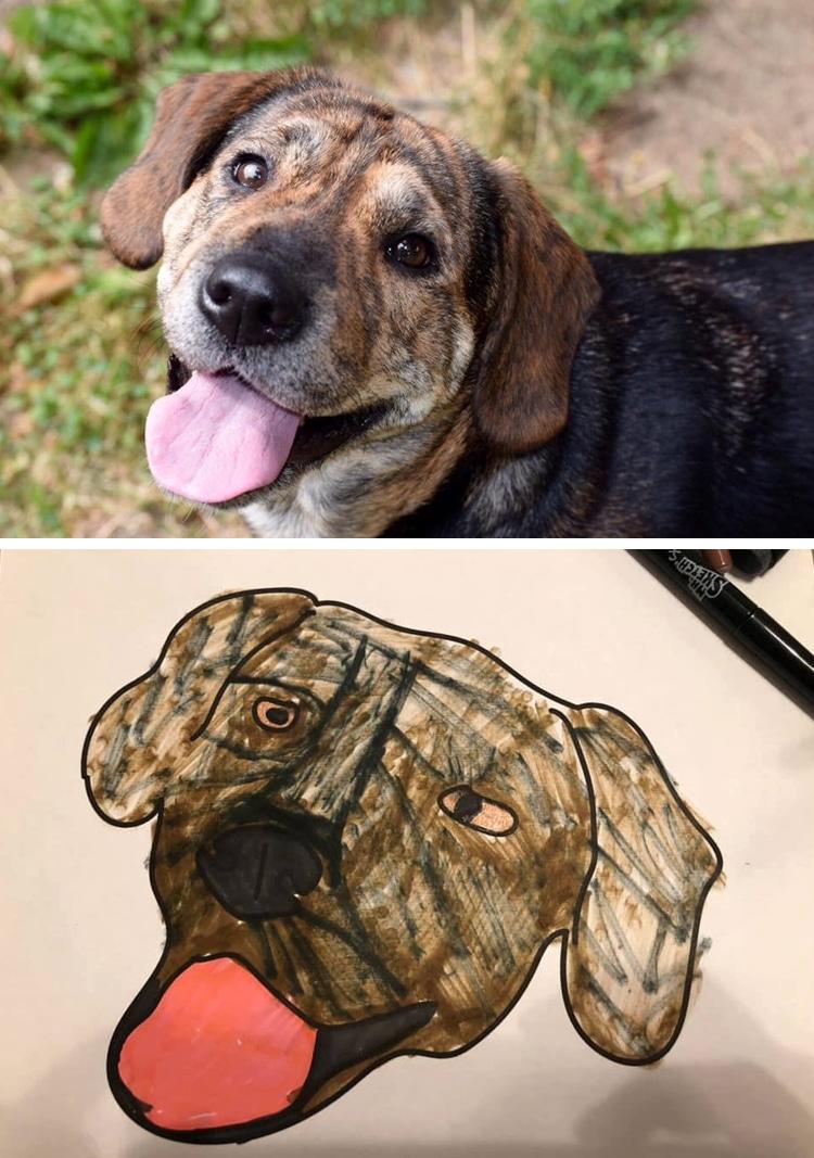 Bad Animal Drawings