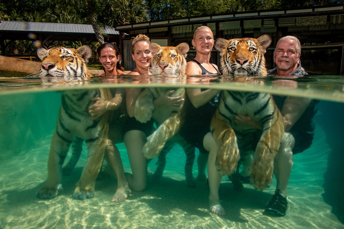Doc Antle with his Wives in a Pool with Tigers