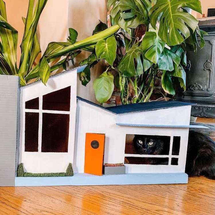Cardboard Cat House by Gentry Sanders