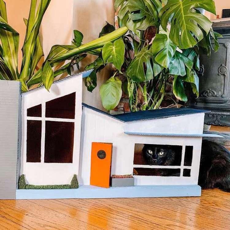 casa de carton para gatos por Gentry Sanders