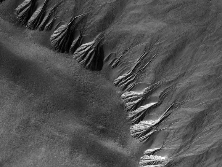 Gullies on Mars in the Lyell Crater