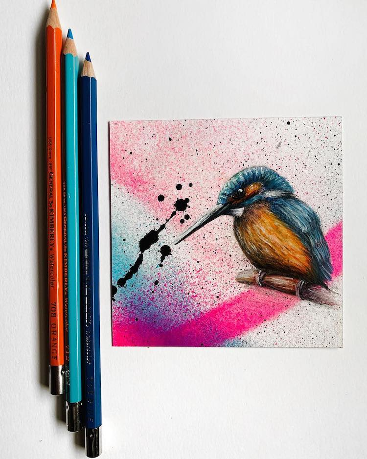 Bird Illustration by Jonathan Martinez