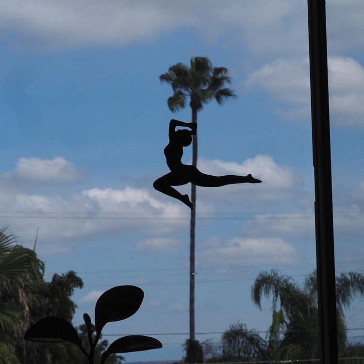 Painted Silhouette of a Dancer on a Palm Tree