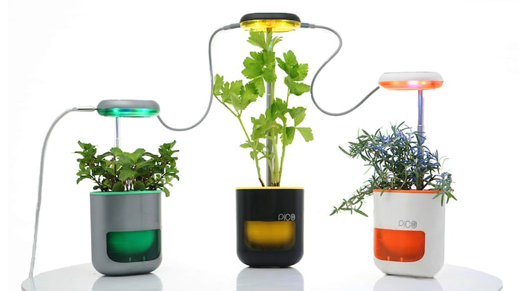 Pico Light Up Planter