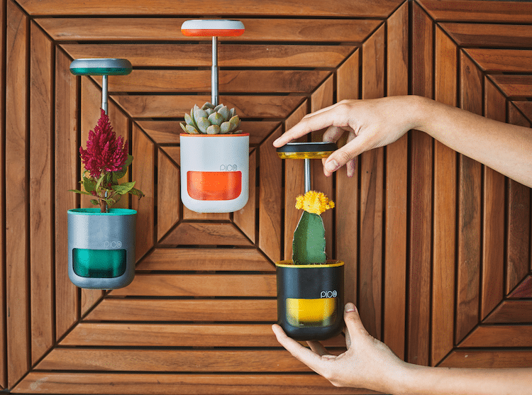 Pico, the Self Watering Planter