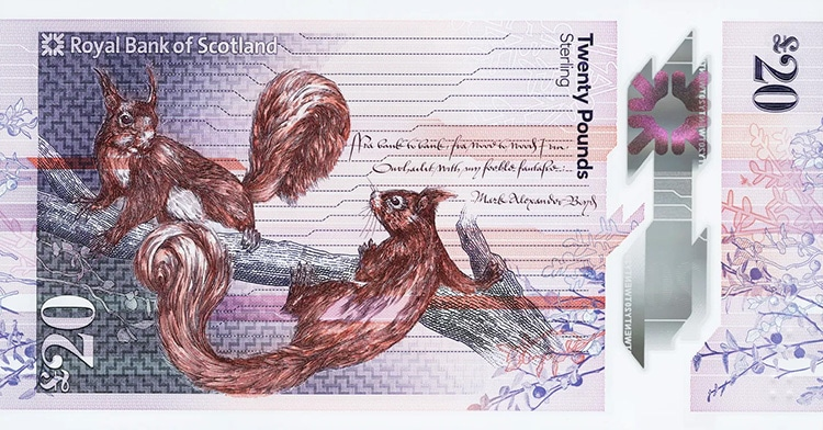 purple colored scottish banknote featuring illustration of two squirrels sitting on a treebranch