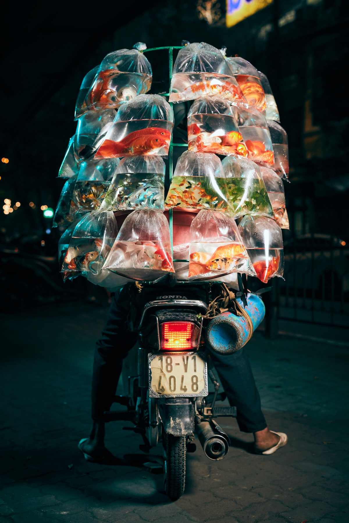 Fish Vendor in Hanoi on His Motorcycle