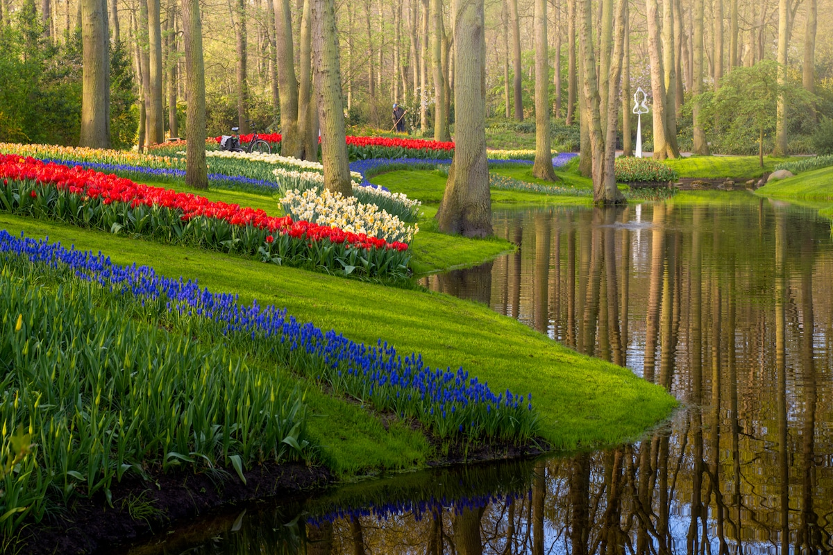 Dutch Flower Garden