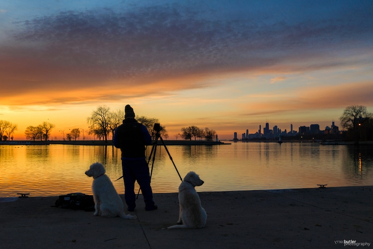 Taking Photos at a Lake with Two Dogs